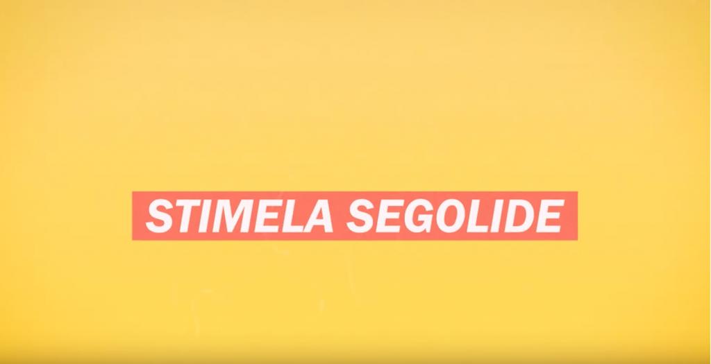 Muzi - Stimela Segolide